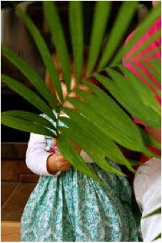 palmgirl